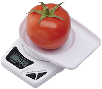 AccuFit Food Scales